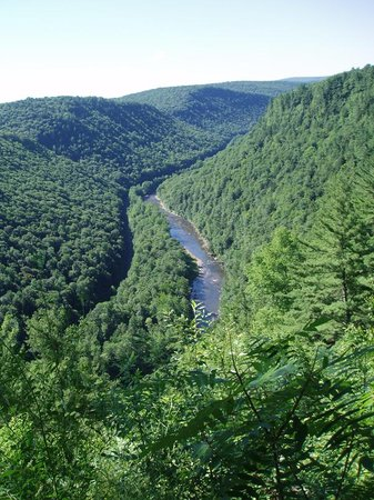 Wellsboro, Пенсильвания: Colton Point view of Canyon
