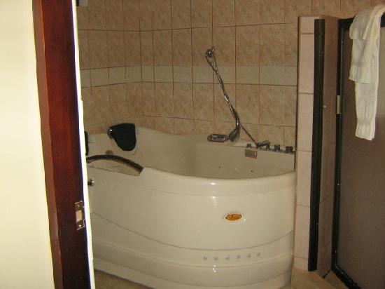Hotel La Amistad: Studio Apt. Jacuzzi and shower