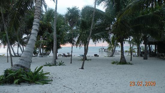 Playa Sonrisa: view from the beachfront bungalow