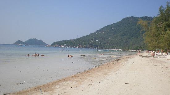 Silver Sands Beach: the beach