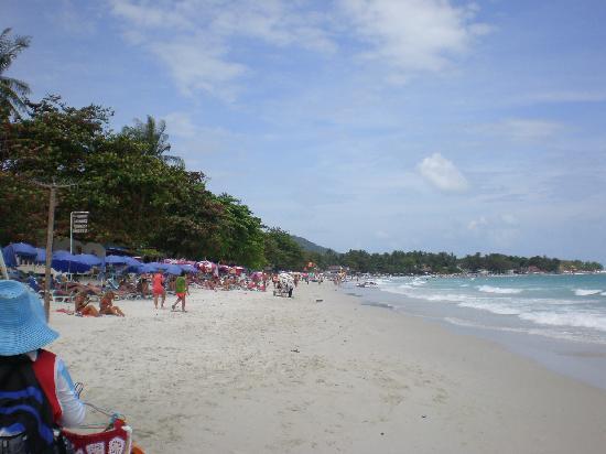 Silver Sand Beach Resort: the beach