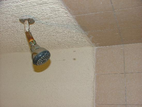 Golden Palace Hotel : Shower head shows the level of maintenance