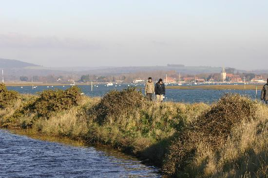 Canute Cottages: Winter walk, sea wall at cobnor and view to Bosham