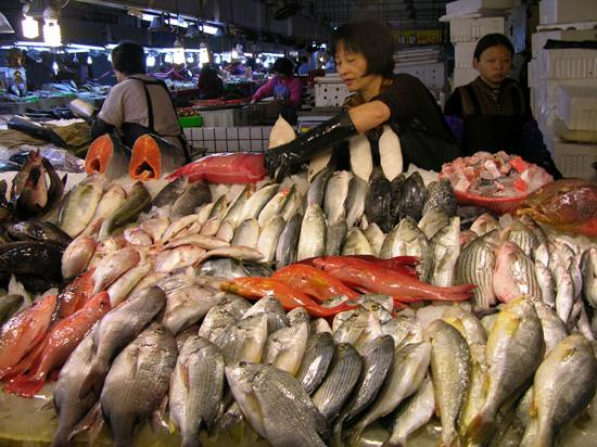 Budai fish market chiayi county picture of chiayi for Local fish market