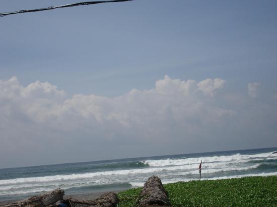 Hotels Near Lighthouse Beach Kovalam