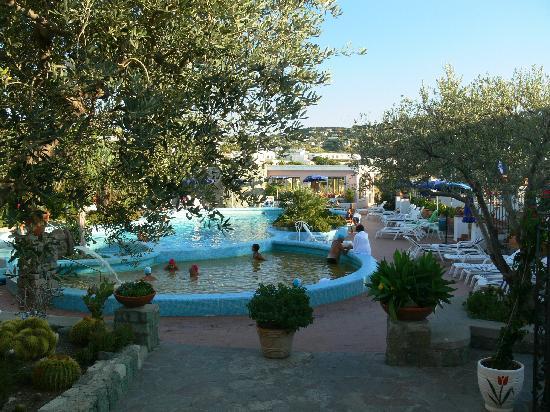 Hotel  Providence Terme & Spa: Piscina di giorno