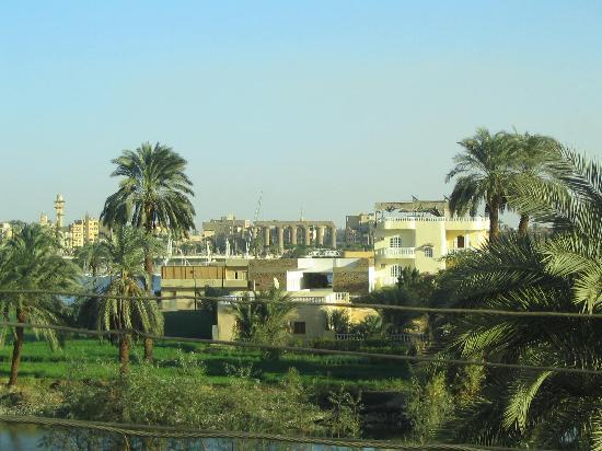 El Nakhil Hotel & Restaurant: Luxor Temple from the rooftop restaurant