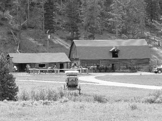 Elkhorn Ranch: Barn and Mule Parlour.