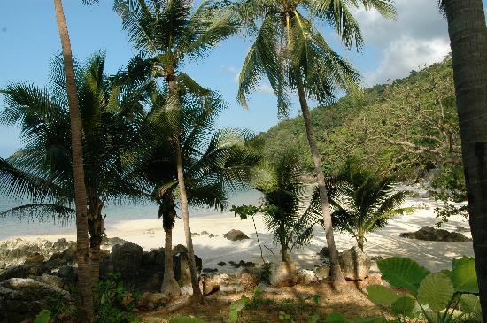 Four Seasons Resort Koh Samui Thailand: Path to the Beach