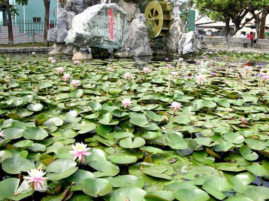 Lotus Lake, Zuoying, Kaohsiung