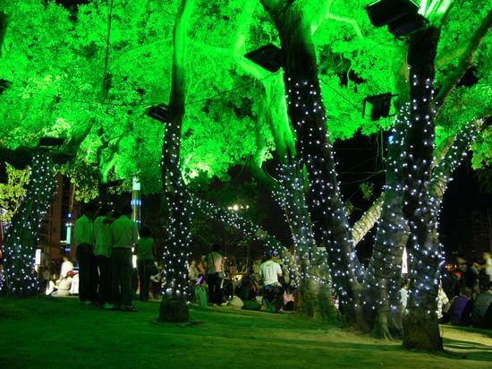 Decorative lighted tree along Love River, Kaohsiung City