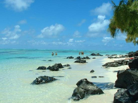 la plage   Photo de Albion, Riviere Noire District   TripAdvisor