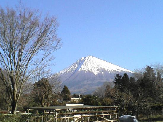 Nishi no Ie : 裏の畑から 01.01.09 NT
