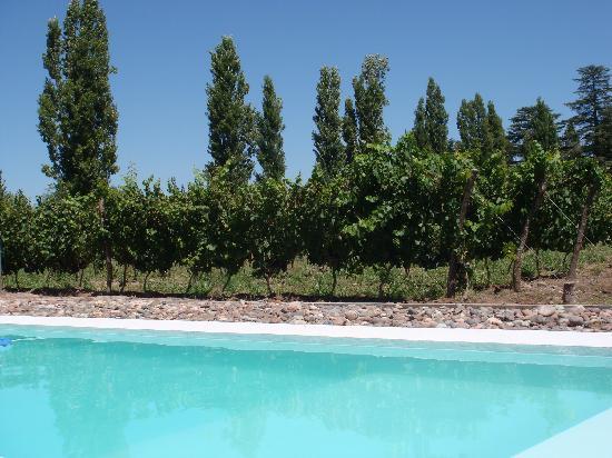 El Aguamiel: piscina