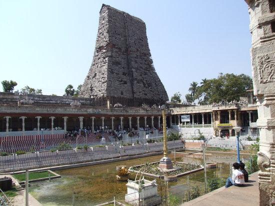 Templo de Sri Meenakshi: Exterior Scaffolding