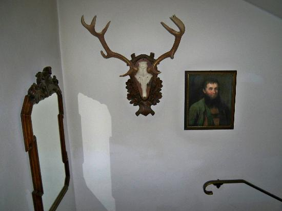 Chalet Strasshofer: One of many hunting trophies around the hotel