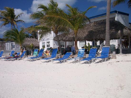 Key Colony Beach Motel: Shot from the beach, nice tiki huts