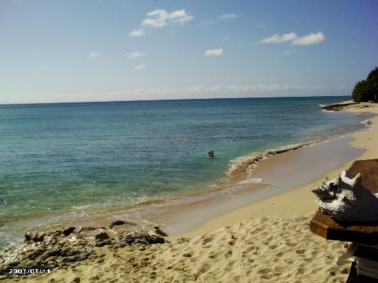 Rhythms at Rainbow Beach : My monster and I taking a dip on a quiet day, taken from the bar..