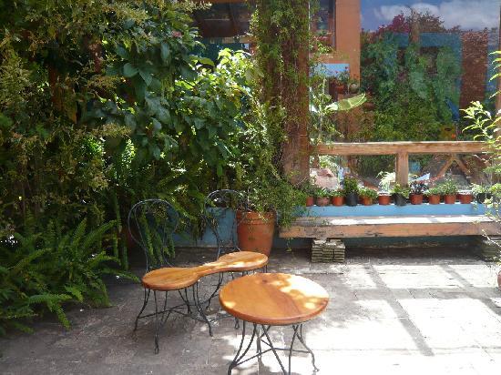 Hotel Posada El Paraiso: patio