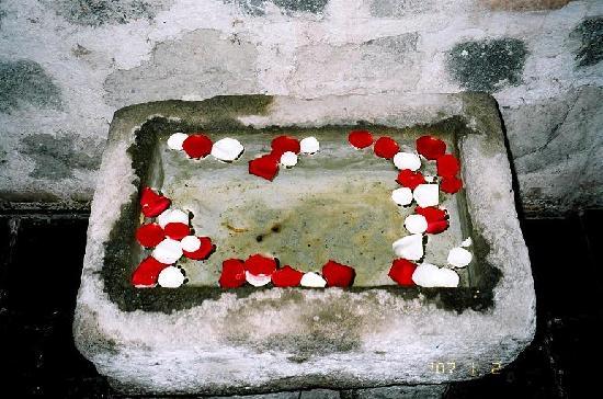 Hotel Museo Spa Casa Santo Domingo: rose petals