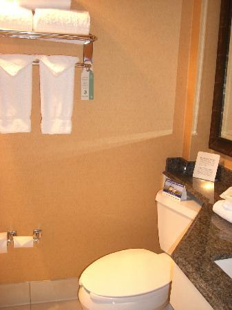 Holiday Inn Raleigh (Crabtree Valley Mall): bathroom