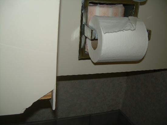 Holiday Inn Express Durham: Chip near toilet holder
