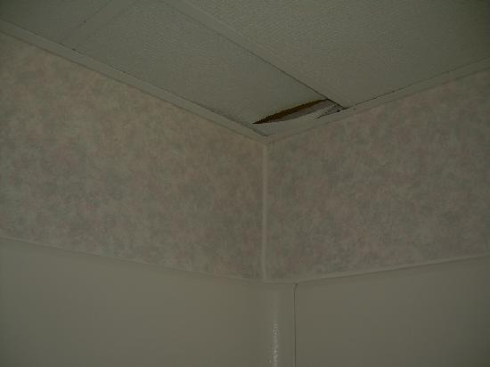 Holiday Inn Express Durham: Broken tile in shower ceiling