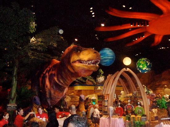 T rex cafe picture of t rex orlando tripadvisor for T rex location