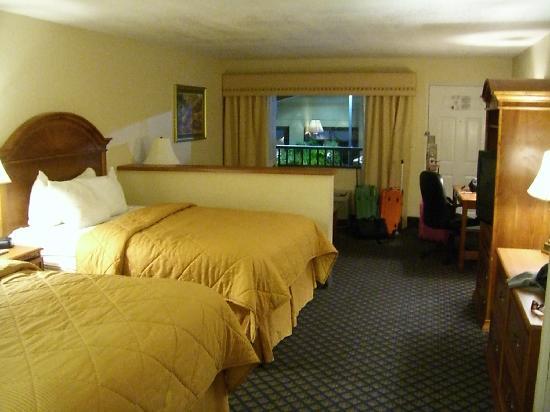 Comfort Inn: camera