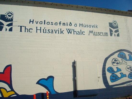 Museo delle balene Husavik