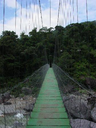 Villas Pico Bonito : the national park hike close by