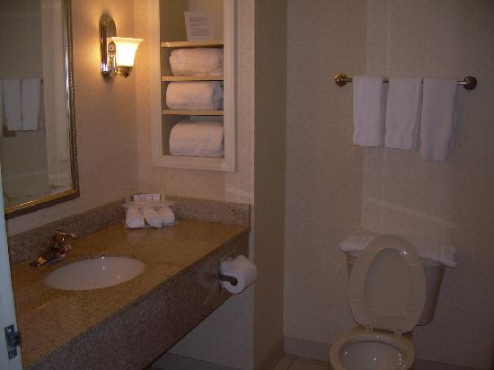 Holiday Inn Express Hotel & Suites Christiansburg : Bathroom