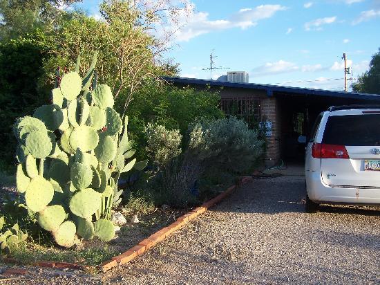 Cactus Quilt Shop Picture Of Tucson Arizona Tripadvisor