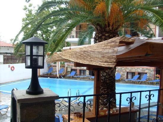 Hotel Calypso : pool are bar