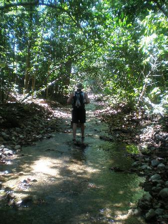 El Remanso Lodge: Riverwalk