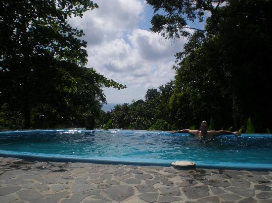 El Remanso Lodge: Perfect freshwater pool with forest and ocean views