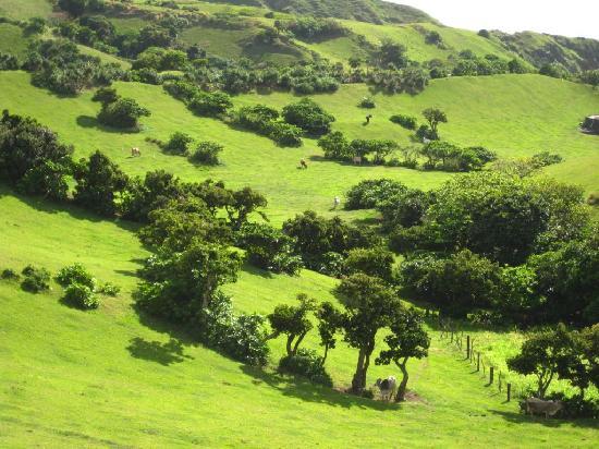 Province of Batanes, الفلبين: batanes landscape