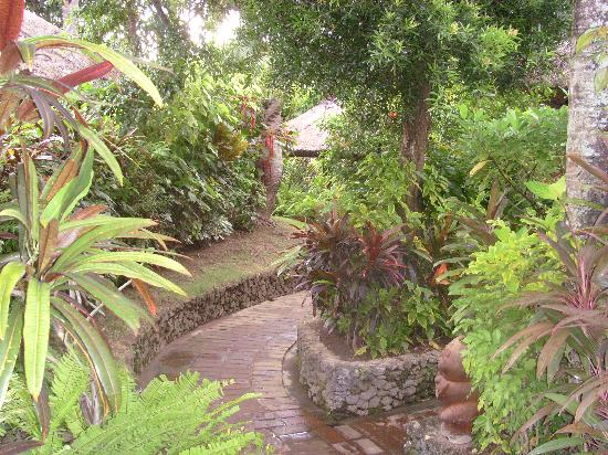Poppies Bali : jardin