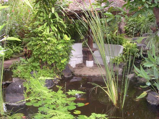 Poppies Bali : jardin2