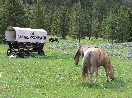 Covered Wagon Ranch: Arriving at the Ranch