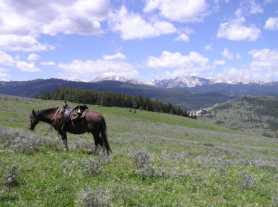 Covered Wagon Ranch: The view gets better with each days ride