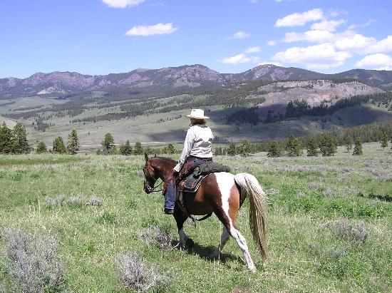 Covered Wagon Ranch: On the Trails