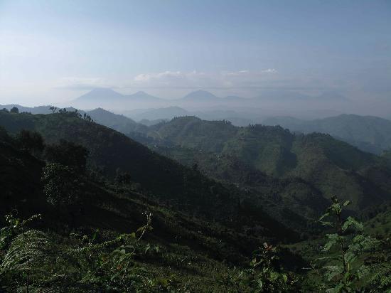 Nkuringo Bwindi Gorilla Lodge: View from Nkuringo Gorilla Campsite