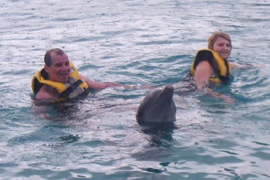Puerto Plata Village Resort: nage avec les dauphins