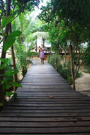 Pousada Bahia Bonita: Way to the beach