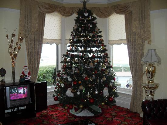 Savoy Hotel - Fleetwood: NEVER SEEN A XMAS TREE THAT BIG!