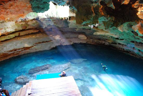 Williston, FL: Devil's Den