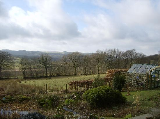 Pant-Teg B&B and Cottages: Amazing views