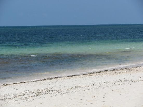 Scorpio Villas: il mare davanti al villaggio