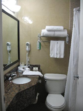 Holiday Inn Express Van Nuys: Bathroom was a little small